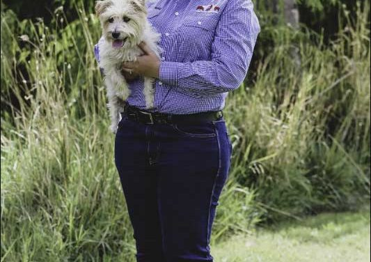 Do you know how to keep your pets safe from ticks and fleas?