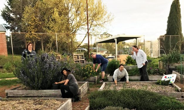 Community Garden Group invites you for pizza