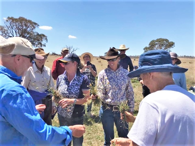 Grazing in a changing climate workshops