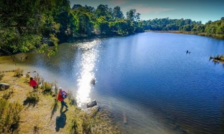 Hume & Hovell Track gets 1.5 Million windfall for improvements
