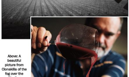"""Sixty Second Swirl Wine – """"deep red with flashes of purple"""""""