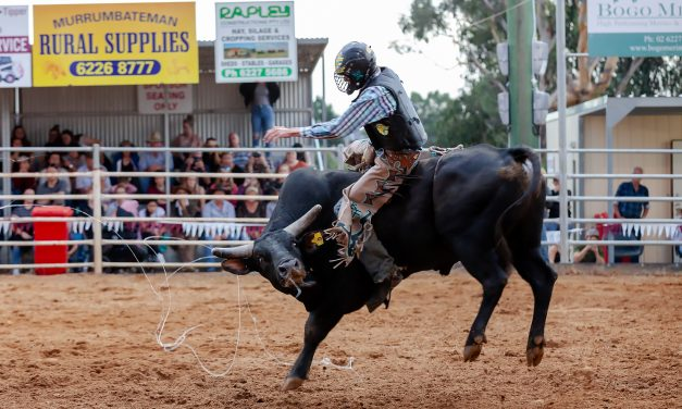 Just for one day – Yass Show and no rodeo