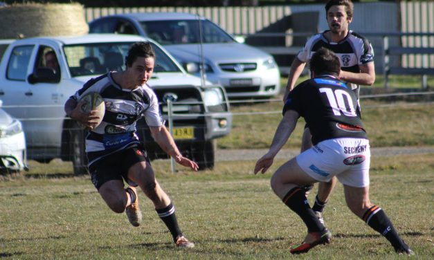Rams and Ewes to play finals, as the club welcomes a new dawn
