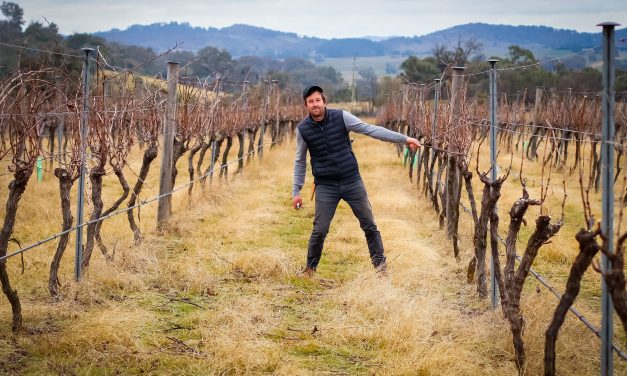 Local winery Linear gets the food-friendly nod in our weekly sixty second swirl